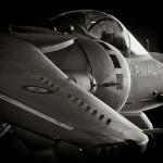AUTOR: Jose Ángel Román OPERADOR: Armada Española AERONAVE: McDonnell Douglas EAV-8B Harrier II+ REGISTRO: VA.1B-29 / 01-919  LUGAR: BN Rota (LERT)