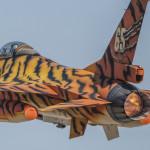 AUTOR. Raul Hernández Sevilla AERONAVE: F-16 LUGAR: Tiger Meet 2016. B.A. Zaragoza