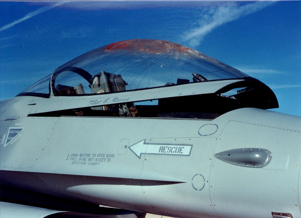 """F16 after bird strike"" by Air Combat Command. Wikipedia."