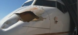 bird-strike-0