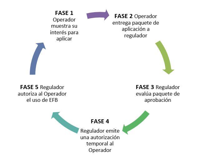 esquema representativo de las fases de aprobación de un Programa EFB.