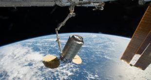 La Cygnus siendo capturada por el brazo robótico de la Estación. foto: NASA