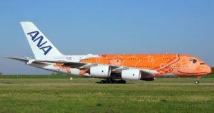 JA383A Honu naranja